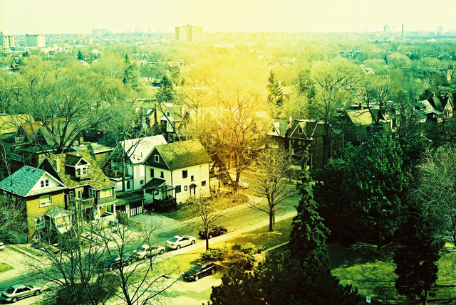 The view from my balcony at High Park.