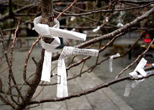 A few paper wishes tied to a tree.